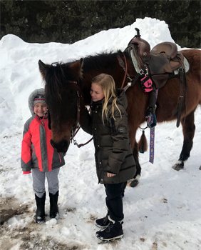 Dun Dreamin Appaloosa Ranch  Trail horses you can depend on
